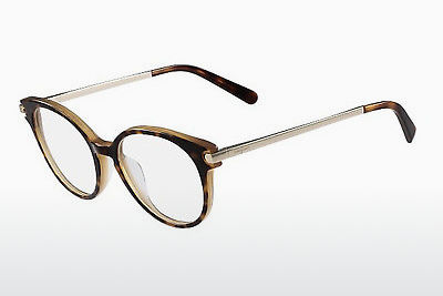 デザイナーズ眼鏡 Salvatore Ferragamo SF2764 245