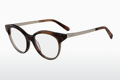 デザイナーズ眼鏡 Salvatore Ferragamo SF2784 254