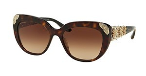 Bvlgari BV8162B 504/13 BROWN GRADIENTHAVANA