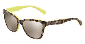 Dolce & Gabbana DG4237 28616G LIGHT BROWN MIRROR GOLDTOP LEO ON YELLOW
