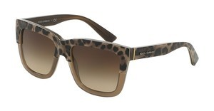 Dolce & Gabbana DG4262 296713 BROWN GRADIENTPRINT LEO ON OPAL MUD