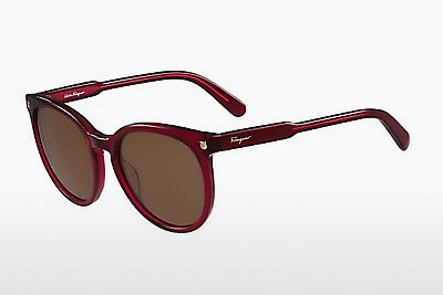 サングラス Salvatore Ferragamo SF816S 525