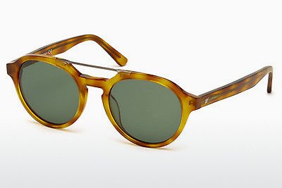 サングラス Web Eyewear WE0155 53N - ハバナ, Yellow, Blond, Brown