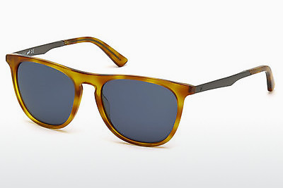 サングラス Web Eyewear WE0160 53V - ハバナ, Yellow, Blond, Brown
