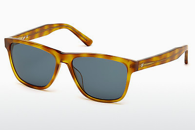 サングラス Web Eyewear WE0161 53V - ハバナ, Yellow, Blond, Brown