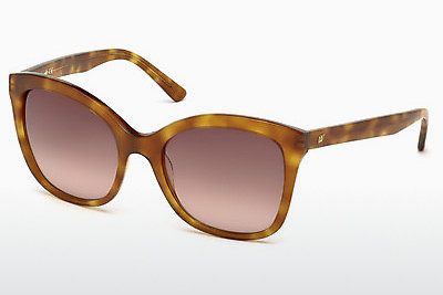 サングラス Web Eyewear WE0165 53F - ハバナ, Yellow, Blond, Brown