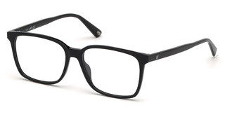 Web Eyewear WE5292 001